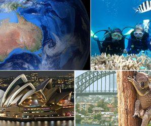 Formatul si rolurile vorbitorilor in Austral-Asian Parliamentary